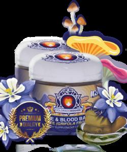 Immune Support | Maitake | Organic Kosher