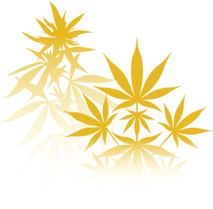 vector hash leaves Right
